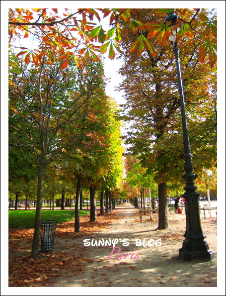 Jardin des Tuileries  12.JPG