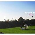 Jardin du Carrousel  2.JPG