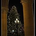 Rathaus Xmas Tree 2.jpg