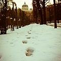 Natural History Museum-Winter 1.jpg