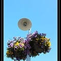Street Light at Friday Harbor.jpg