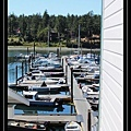 Roche Harbor 6.jpg