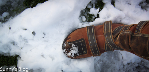 Boot in the snow.jpg