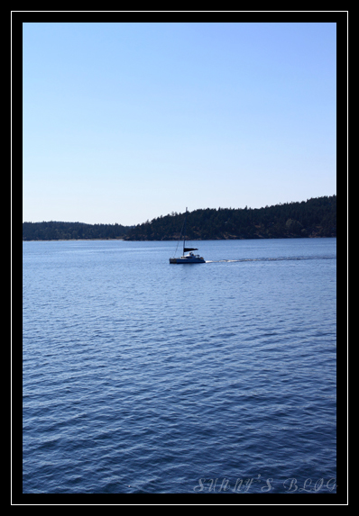 On Ferry 3.jpg