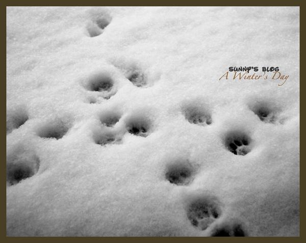 Footstep.jpg