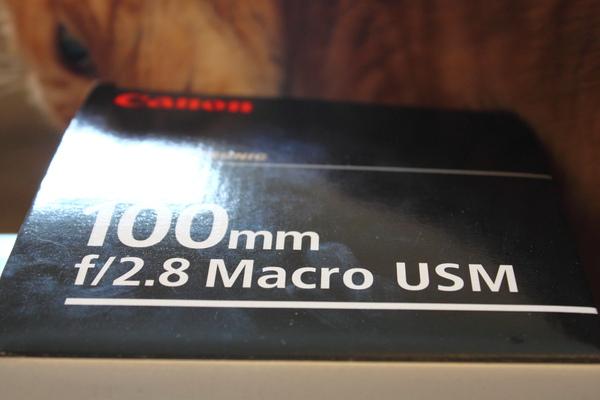 100 mm macro cover 2.JPG