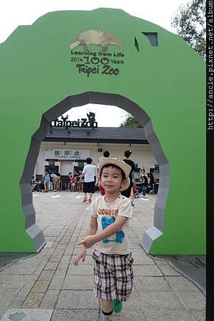 DSC01363-1.jpg