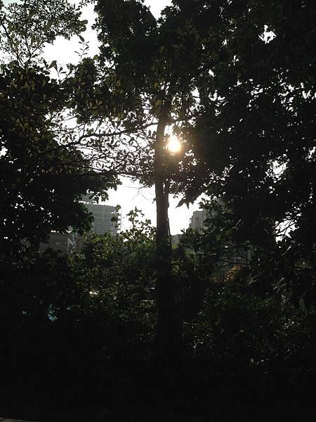 秋在生活的角落-葛喬源-2.jpg