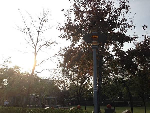 秋在生活的角落-葛喬源-5.jpg