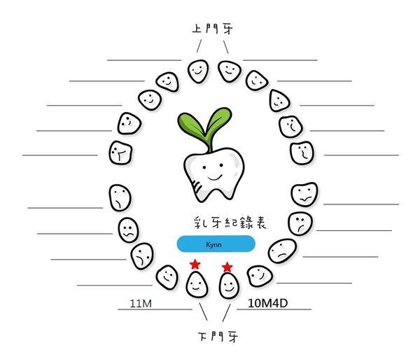 Kynn牙齒成長紀錄