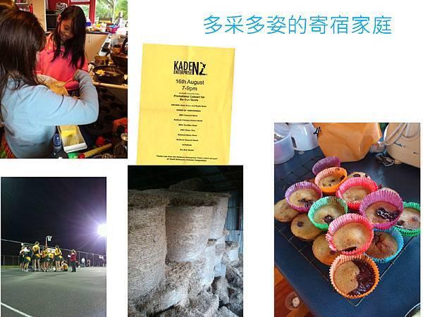 紐西蘭遊學ppt2012_頁面_08