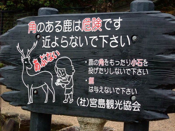 調整大小2009日本行 406.jpg