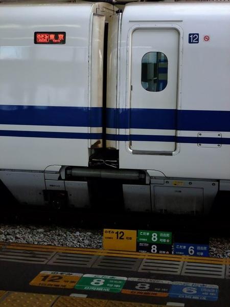 調整大小旋轉 2009日本行 627.jpg