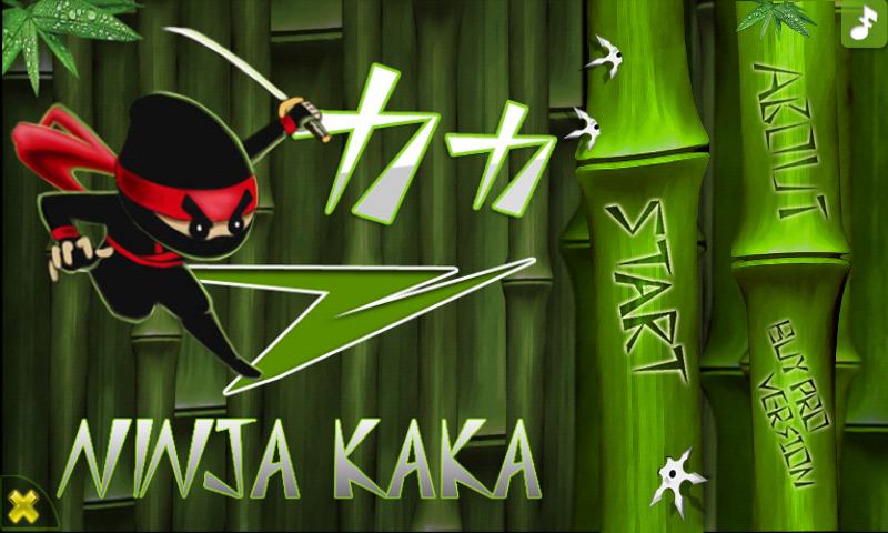 ninjakakamain.png