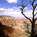 科羅拉多大峽谷(美國).jpg