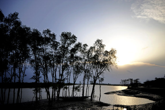 孫德爾本斯三角洲(Sundarbans Delta).jpg