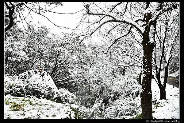 20150124汐止五指山賞雪21