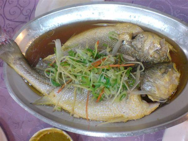 蒸黃魚.JPG