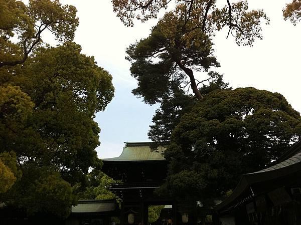 日本遊 (28).jpg