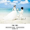 子維馨云 DVD封面