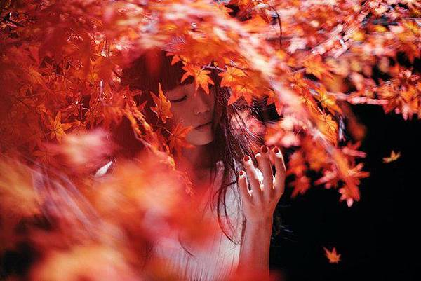 茜さす - Aimer