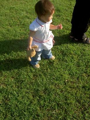 草地上漫步