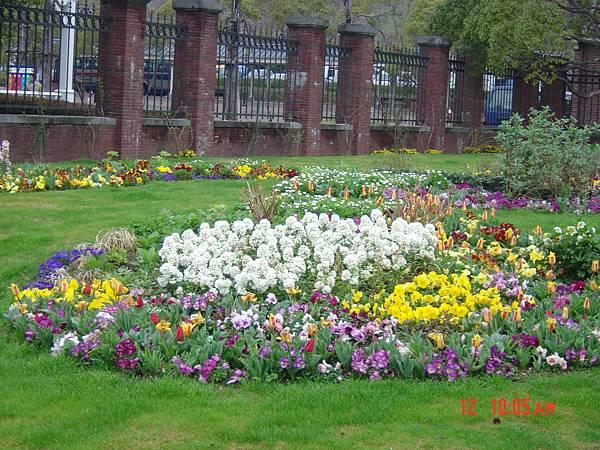 豪斯登堡-入園第二花圃