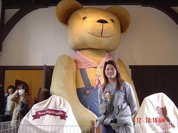 豪斯登堡-巨型泰迪熊