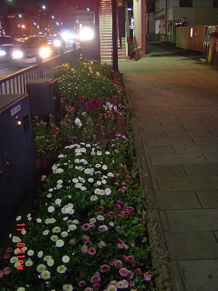 長崎街道-馬路花圃