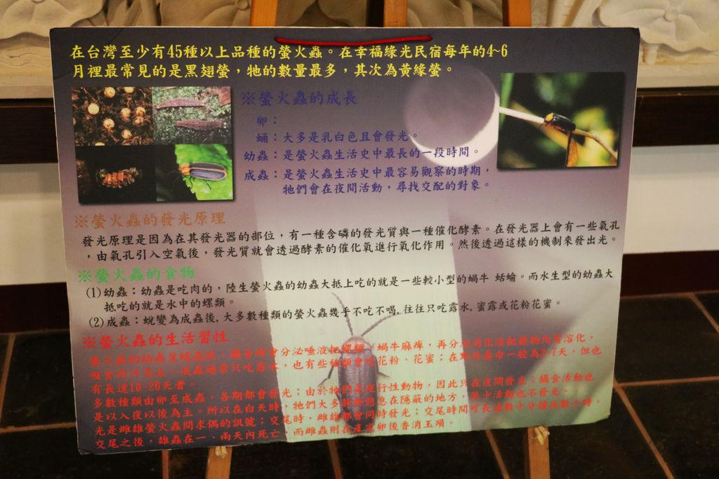 苗栗南庄 幸福綠光 (30).JPG