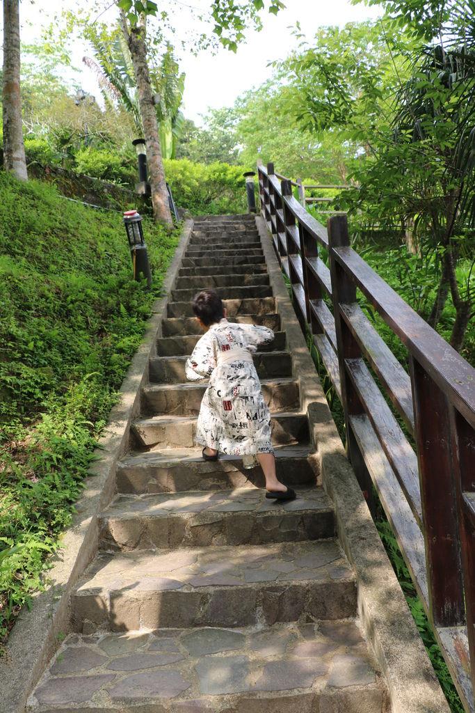 苗栗南庄 幸福綠光 (56).JPG