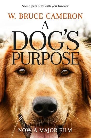 a-dog-s-purpose-2
