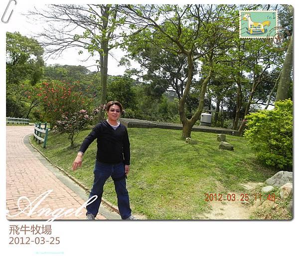 DSCN1984_副本