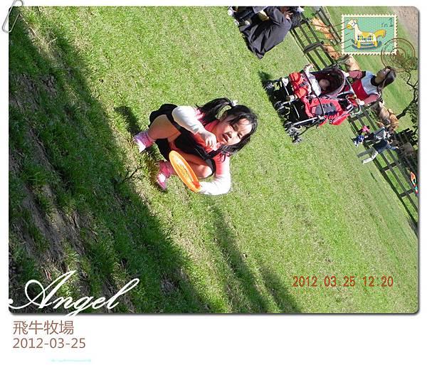 DSCN2003_副本