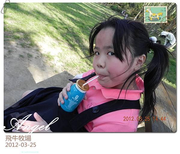 DSCN2093_副本