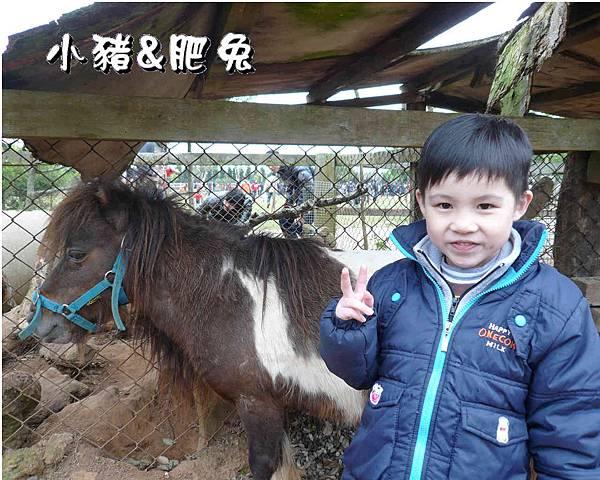 台中市【天馬農場】10