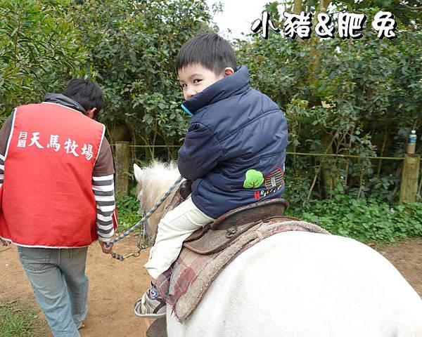 台中市【天馬農場】28