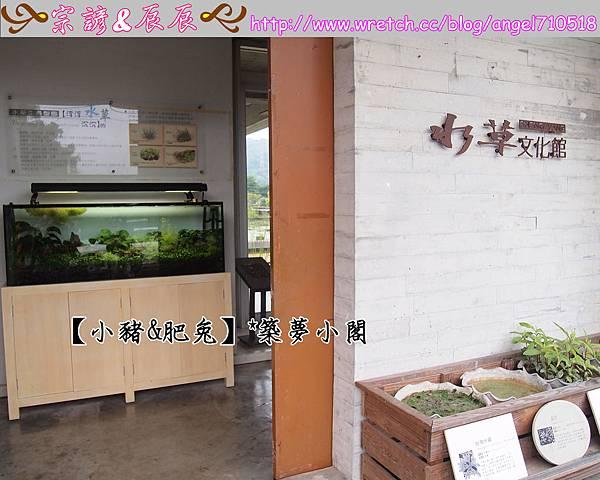 宜蘭縣.員山鄉【勝洋水草休閒農場】06