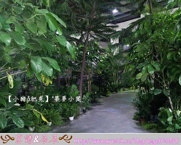 台北市華山文化創意產業園區【昆蟲展】04