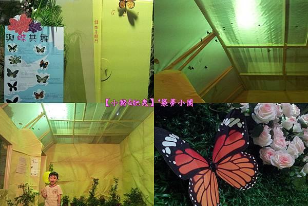 台北市華山文化創意產業園區【昆蟲展】11