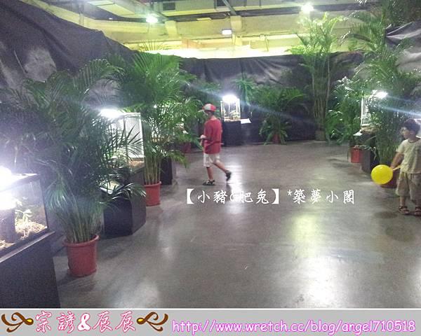 台北市華山文化創意產業園區【昆蟲展】12