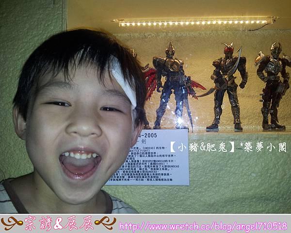 台北市華山文化創意產業園區【昆蟲展】18