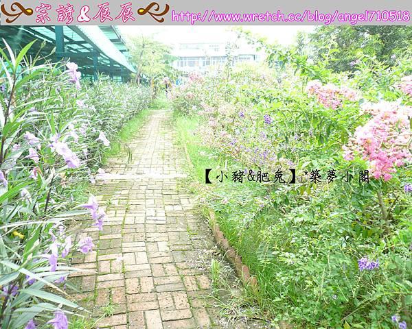 桃園縣.龍潭鄉【老貝殼休閒農塲】08