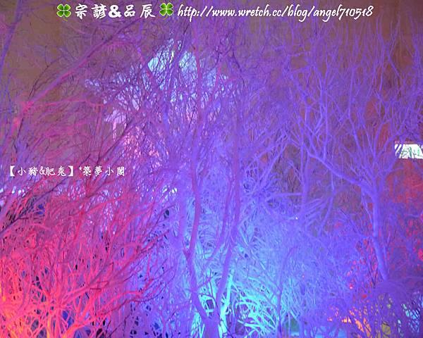新竹縣.竹北市【2013年哈爾濱冰燈嘉年華】17