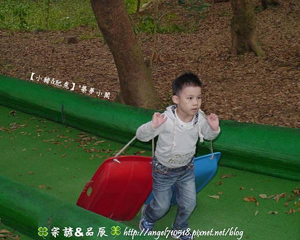 苗栗縣.竹南鎮【四方鮮乳牧場】11