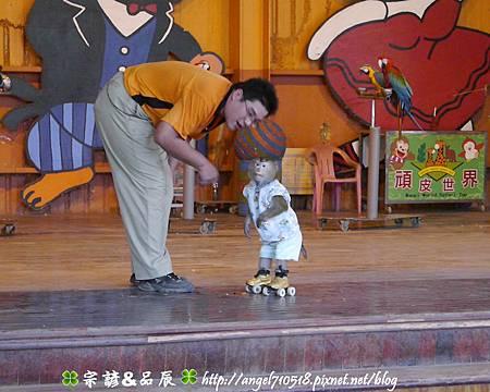 臺南市.學甲區【頑皮世界野生動物園】35.jpg