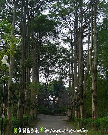 台南市.柳營區【南元休閒農場】33.jpg