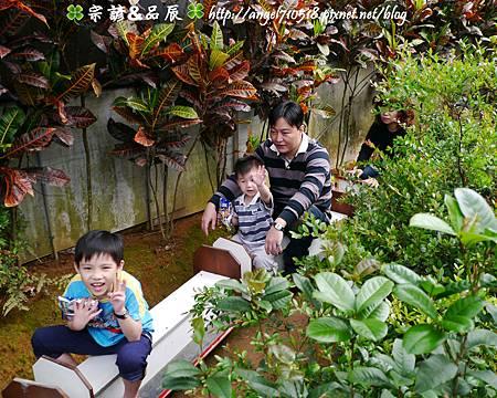 新北市.三芝區【福順農場】15.jpg