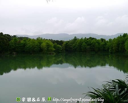 【夢幻雲山水】花蓮縣.壽豐鄉14.jpg