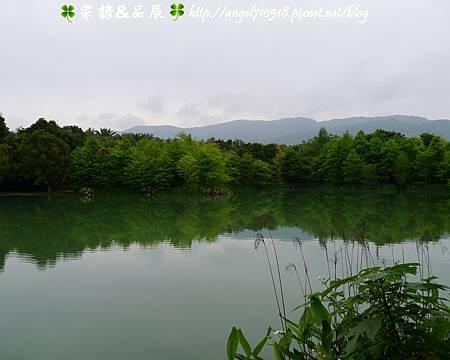 【夢幻雲山水】花蓮縣.壽豐鄉12.jpg